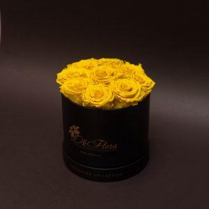 Trandafirul criogenat: ce este, cum se întreține și simbolistică